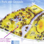 Where the crocus bulbs will be planted from 10am on Sunday, November 20