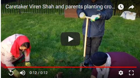 Caretaker Viren Shah and parents planting crocuses